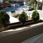 φυτά, κήπος, kipos, khpos
