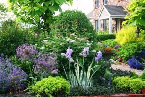 κατασκευή συντήρηση κήπων